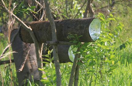 Gulu-Ojok-Simon_(12)_fb_Ojok.jpg